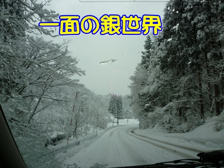 01-04-P1010732.JPG