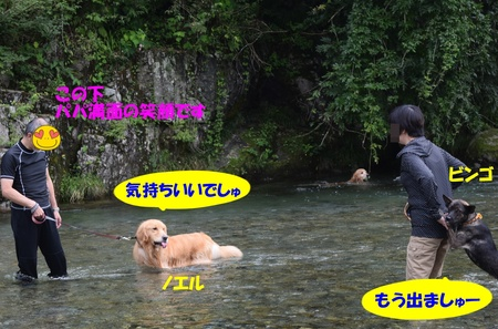 01-DSC_0005.JPG