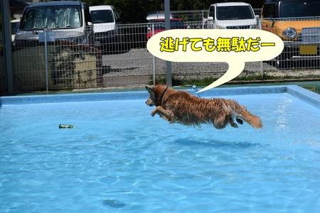 03_160618_0088.JPG