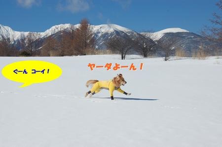 04-DSC_0021.JPG