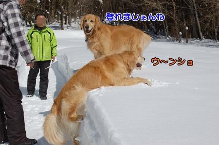 050_DSC_0031.JPG