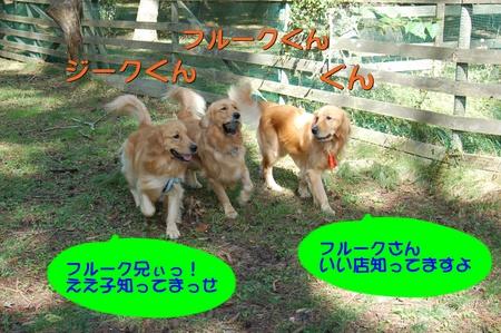0913-ぐんとジークとフルーク-01.JPG