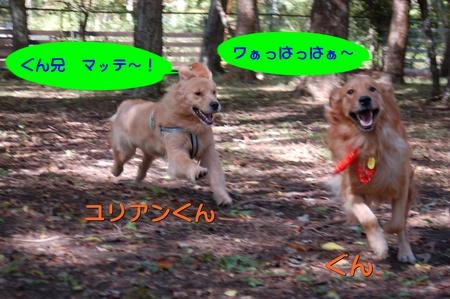 0913-ぐんとユリアン-01.JPG