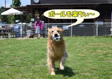 09_160618_0142.JPG