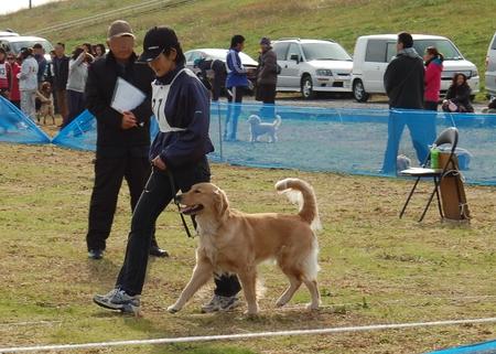20121202-00競技レフア.JPG