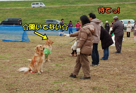 20121202-08-座って待てぐん1.JPG
