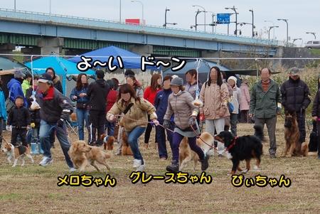 20121202-09-パン食い競争1.JPG