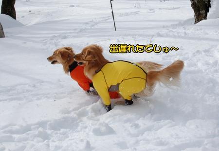 クレぐん競争-03-DSC_0101.JPG