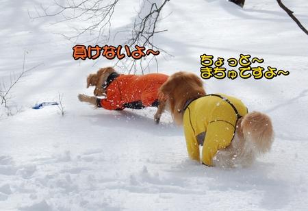 クレぐん競争-04-DSC_0103.JPG