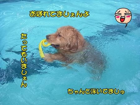 プール--04-RIMG0045.JPG