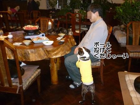 夕飯-01-P1010445.JPG
