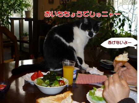 朝食-03-P1010461.JPG