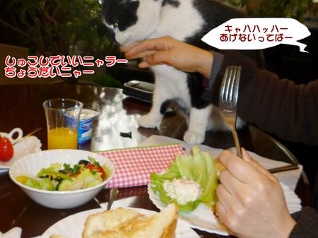 朝食-04-P1010471.JPG