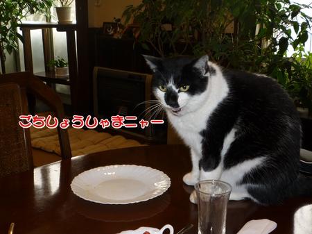 朝食-06-P1010477.JPG